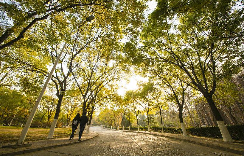 Khuôn viên Đại học Yến Sơn